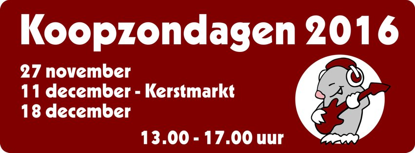 Koopzondagen in Franeker 2016